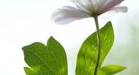心から美しくなれる「本当の美」を目指すときに必要なコト【瞳子先生の人生相談】第35回