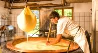 プロのこだわりが伝わる!手作りチーズが美味しい4つの理由とは?