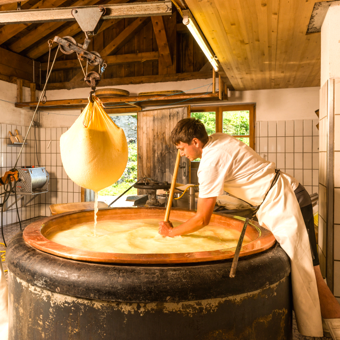 旬チーズ_チーズ工場2