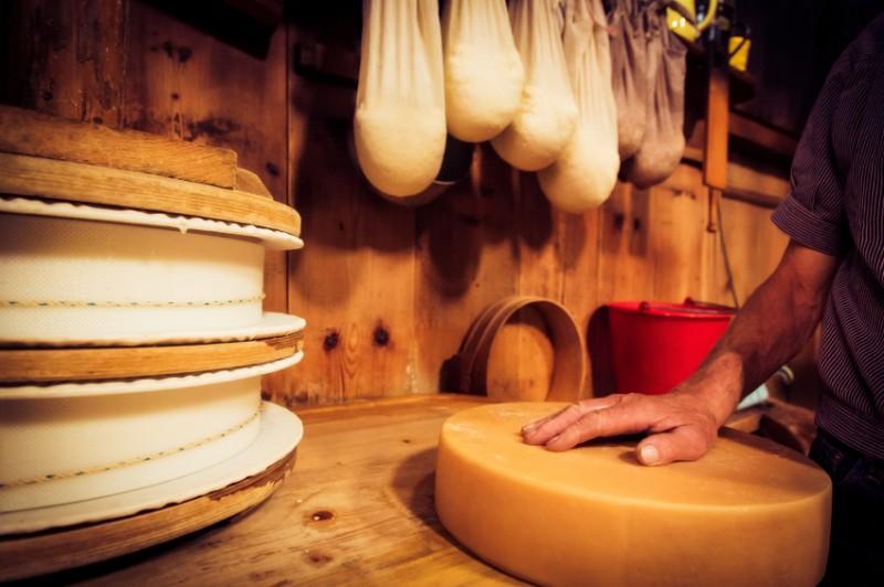 チーズ旬_チーズ工場
