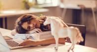 目が重くて仕事に集中できない…昼食後、眠くならない方法とは?