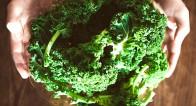 パクチー、ケール・・・トレンド野菜は自宅で作れる!?